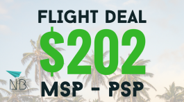 FLIGHT DEAL - Template (3)